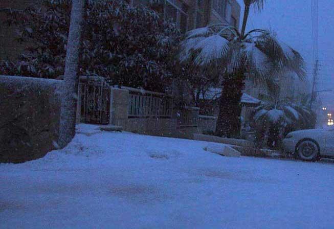 شاهدو صور الثلوج بلاردن اليوم 29\2\ 7-BWHEOB7-29022012110258