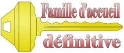 BOBY - epagneul 10 ans - Association Galia à Fontenay le Comte (85) FAD-3