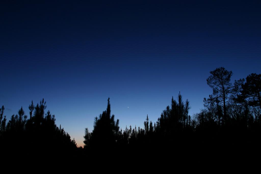 Ciel profond de printemps - Page 2 Venus-mercure-080410r
