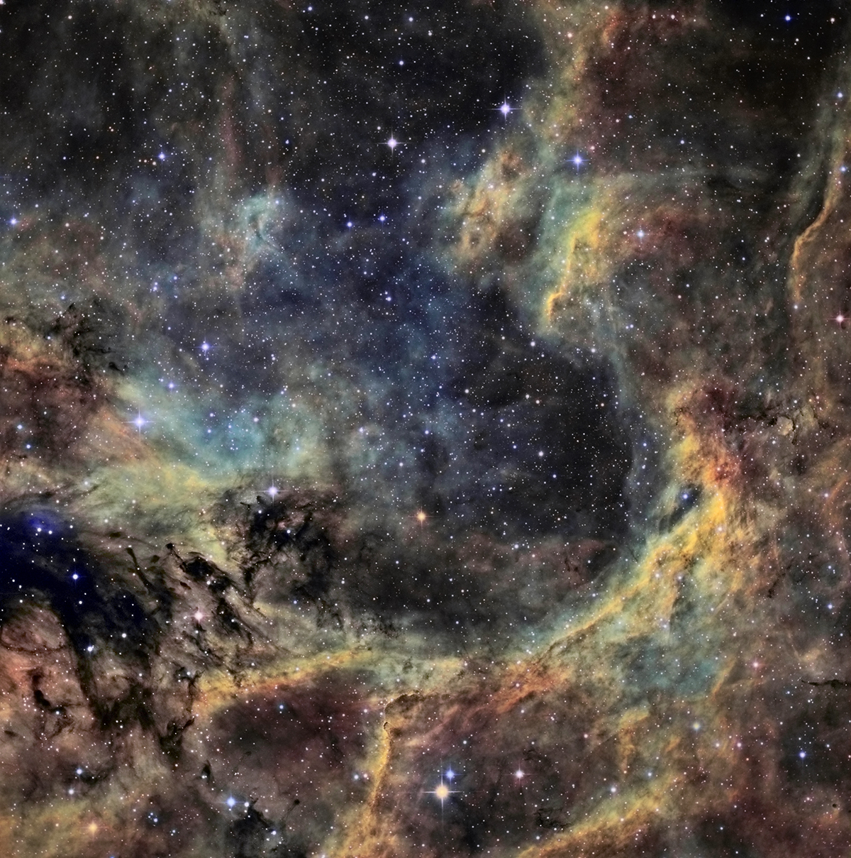 Région du Cygne NT200 ASTROJEJE Region_cygne_1200