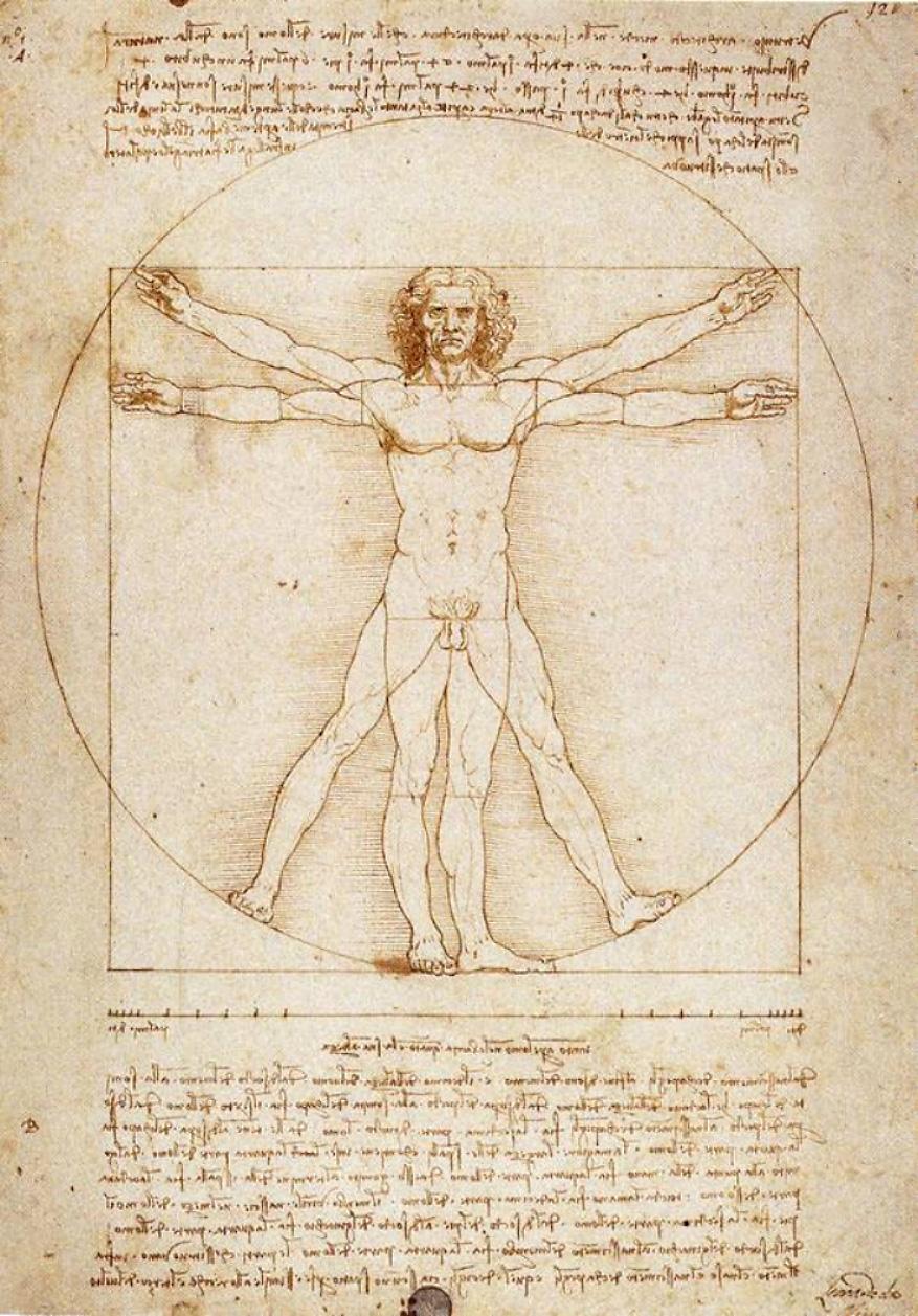 Fonctionnement des symboles Vinci-homme-vitruve