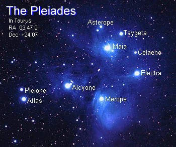 COBRA UPDATE: It's Time—Make This VIRAL!  Pleiades