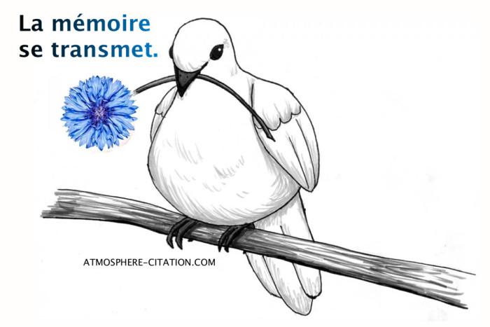 Vendredi 11 novembre Bleuet-de-France-guerre-memoire-11-novembre-e1447229587964