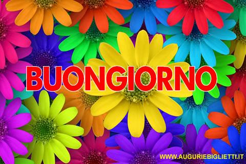 Giovedi 14 Maggio Buona giornata Buongiorno_margherite