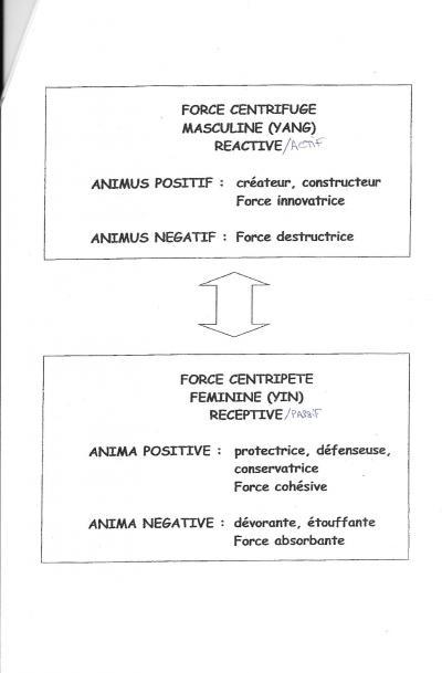 Jung : expérimentation de l'individuation pour Zébres Adpulo5ebee