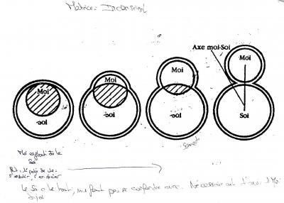 Jung : expérimentation de l'individuation pour Zébres Duploa5ebf0