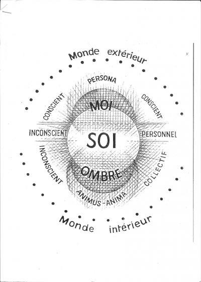 Jung : expérimentation de l'individuation pour Zébres Oadulp5ebea