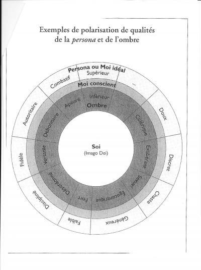 Jung : expérimentation de l'individuation pour Zébres Uplaod5ebf2