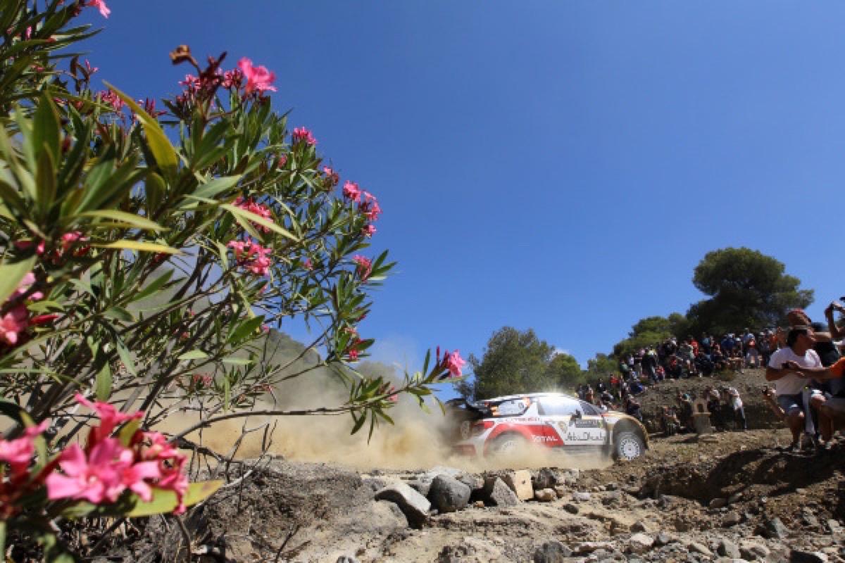 WRC News... - Page 16 _Dppi_01113005_370