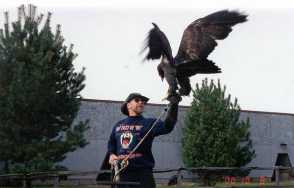 Comparação do tamanho de águias  com relação ao homem. Ge02