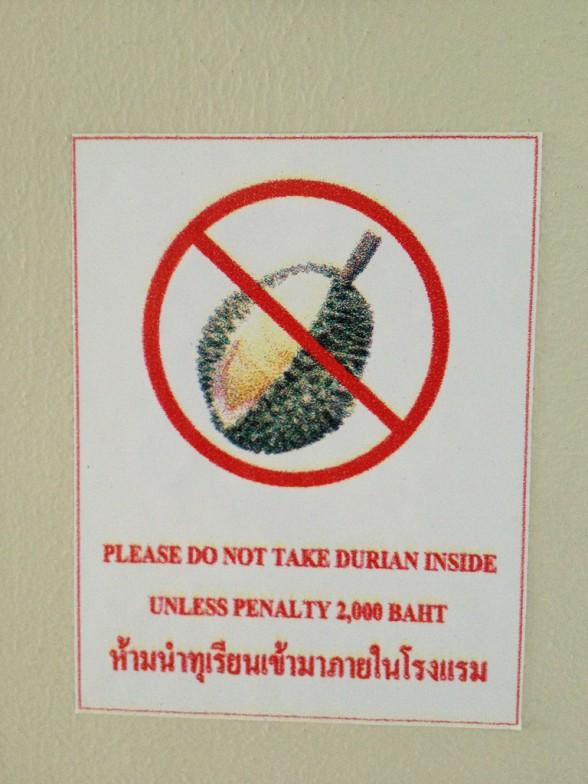 la chose mystérieuse par blucat (5 juillet) trouvée par ajonc - Page 2 Durian4-588x784