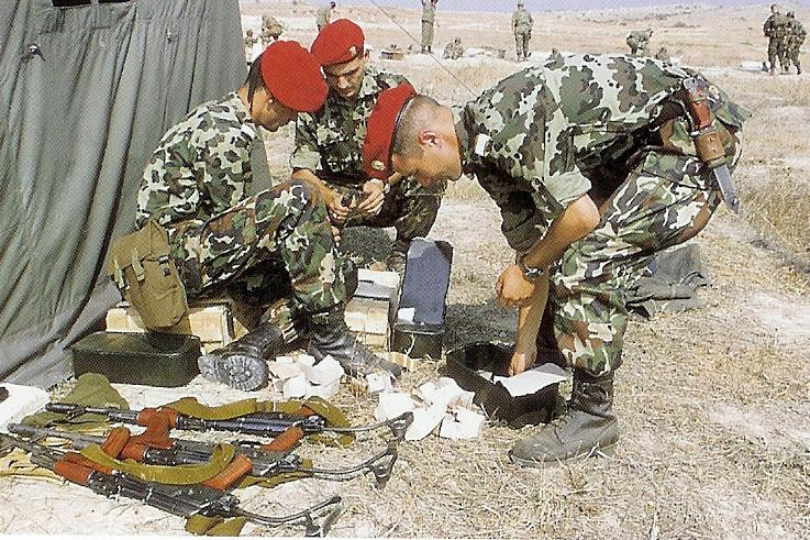 Romanian AIMS-74 calibru 5,45mm   RomReload