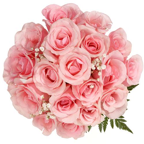 حينمـا تنطـق الـورود .. 21448_11241220442