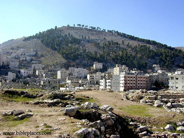 بعض المدن الفلسطينية  443_01261584982