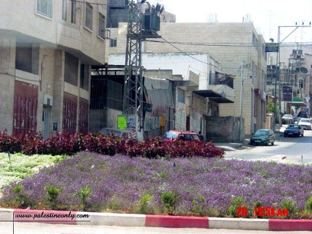 بعض المدن الفلسطينية  443_01261586012