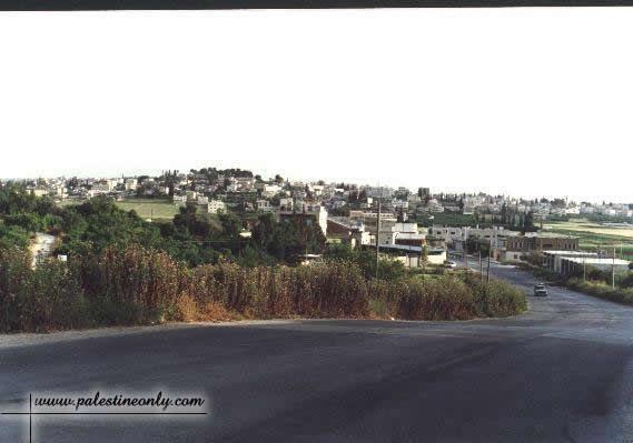 بعض المدن الفلسطينية  443_01261586041