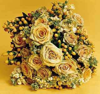 صور للورود روووووووووووووووووووووووووووووعه MB1201flowers4