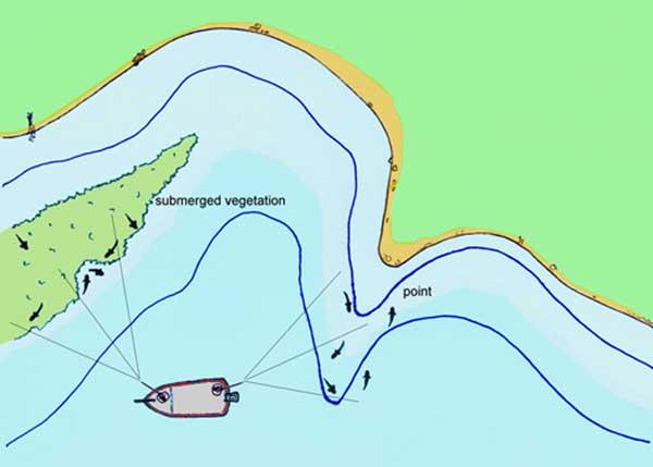 Fundamentos de Pesca con la armada Texas Rig por José Manuel López Pinto Mikefishingillustration7