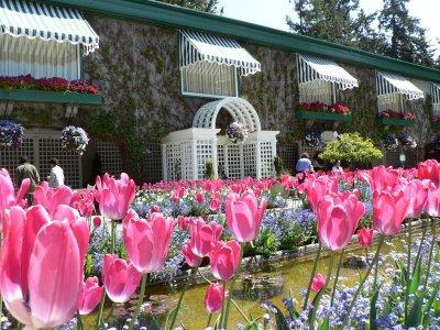 Najlepse baste dvorista i parkovi Butchart-garden-5
