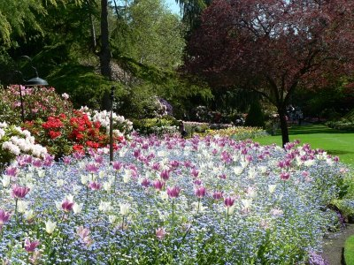 Najlepse baste dvorista i parkovi Butchart-garden-7