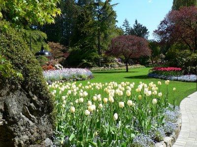Najlepse baste dvorista i parkovi Butchart-garden-8