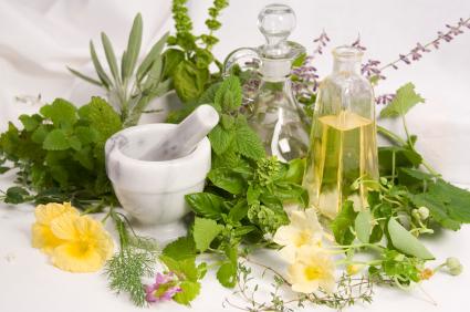 Les plantes médicinales en sursis ! Pétition contre la directive européenne THMPD Arton1490-68861