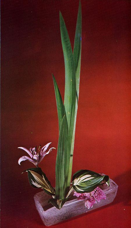cvjetni aranžmani Ikebana2