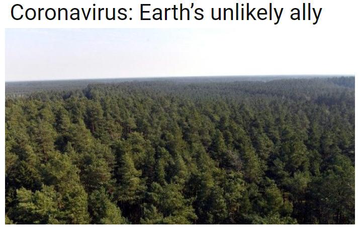 News au 7 avril 2020 Coronavirus-vatican-news