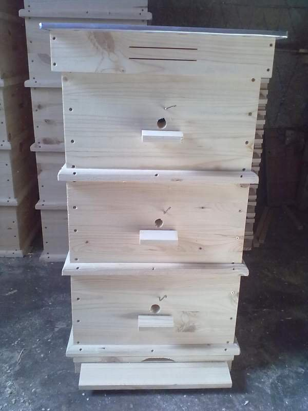 Пчеларство - Page 2 130223