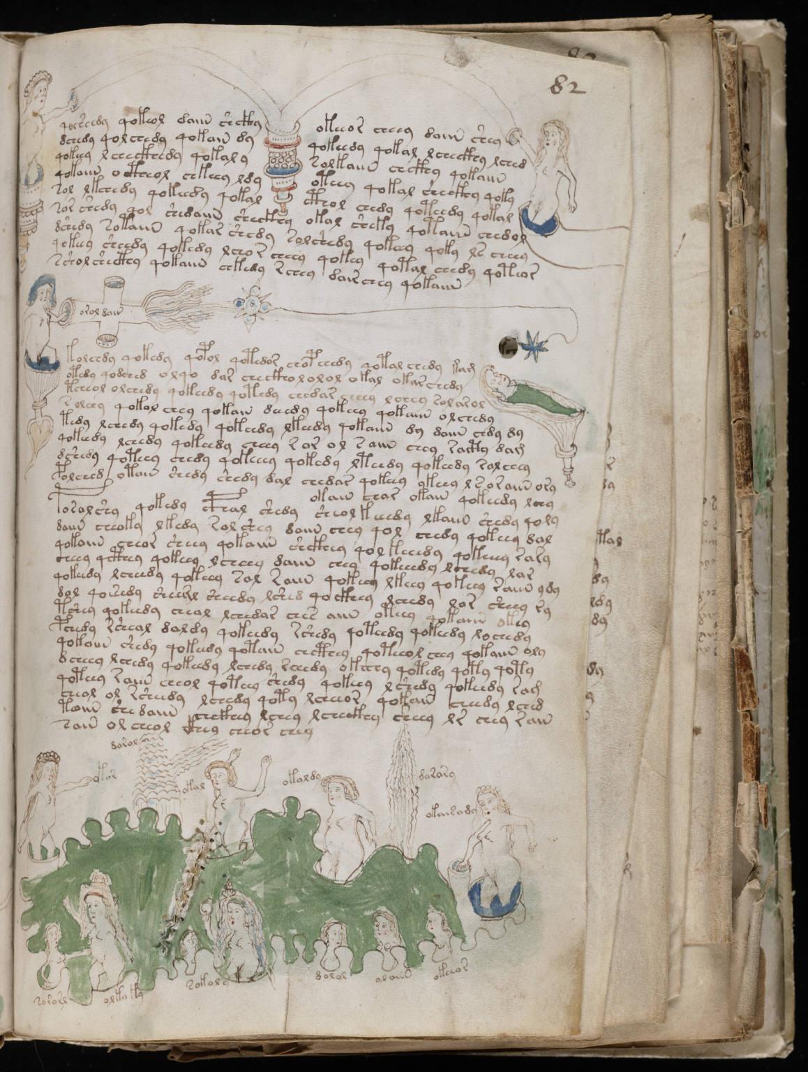 The Voynich manuscript Manuscrito147