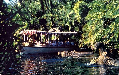 visite du Disney world magic Kingdom 11300-500