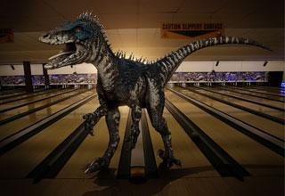 Raptor 6nd9-1