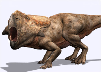 Protoceratops 6nd9-11