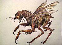 Megopteran 6nd9-15