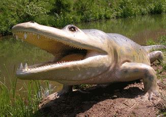 Mastodonsaurus 6nd9-6g