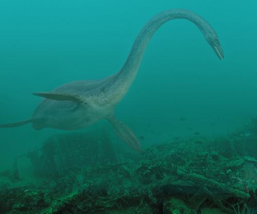 Plesiosaurier 6nd9-76