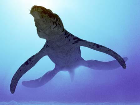 Pliosaurier 6nd9-c1
