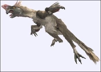 Oviraptor 6nd9-y