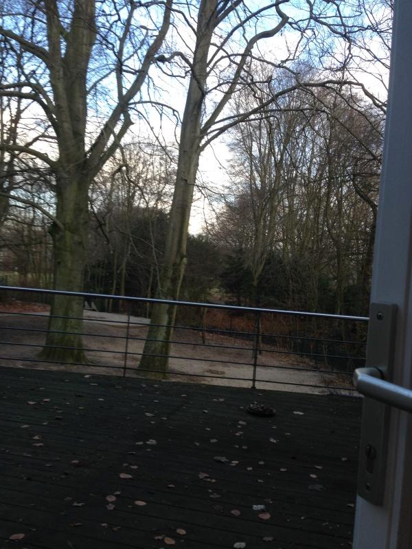 [31.01.15] Hamburg - Meister und Schüler 2 - Ergebnisse Ew0j-3uc-b22e