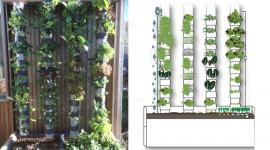 L'éveil de la permaculture, le film qui aide à changer le monde 35623-recolter-100kg-legumes-sur-1m2-cest-promesse-start-up