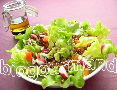 Salade fraîcheur de quinoa rouge et sa sauce tamari 03-saladkinosauvaj