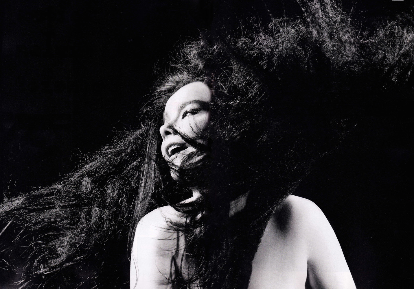 Photoshoots: Era Biophilia 2011-inez-vinoodh-02