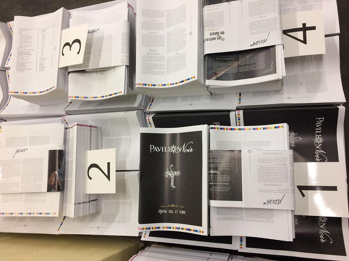 Actualité Pavillon Noir - Page 14 PN2_01_La%20Revolte_pic%209