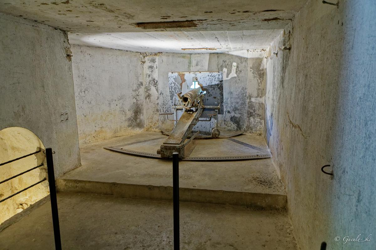 Balade aux forts de Vaux et Douaumont le 25 juillet 2020 Vaux-Douaumont-Valmy-Chalon_038