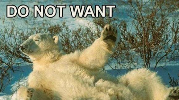 ELKIN, SOFIA ALICE Do-not-want-polar-bear