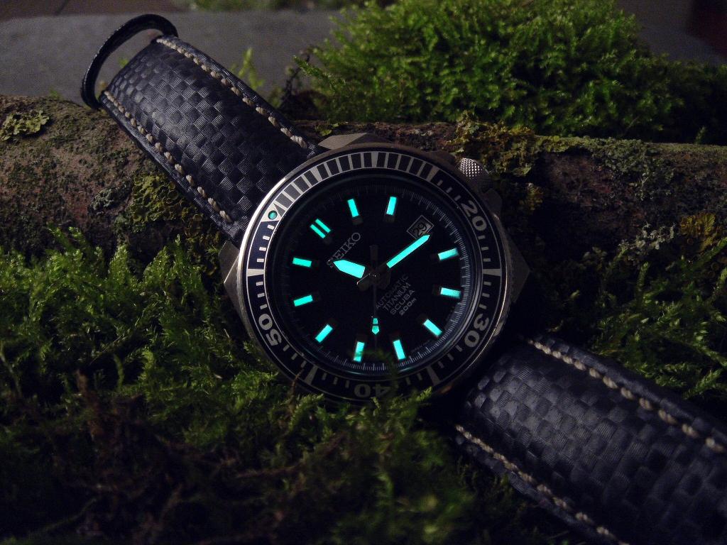 Feux de vos montres monté sur Carbon Hirsch - Page 2 Sam14