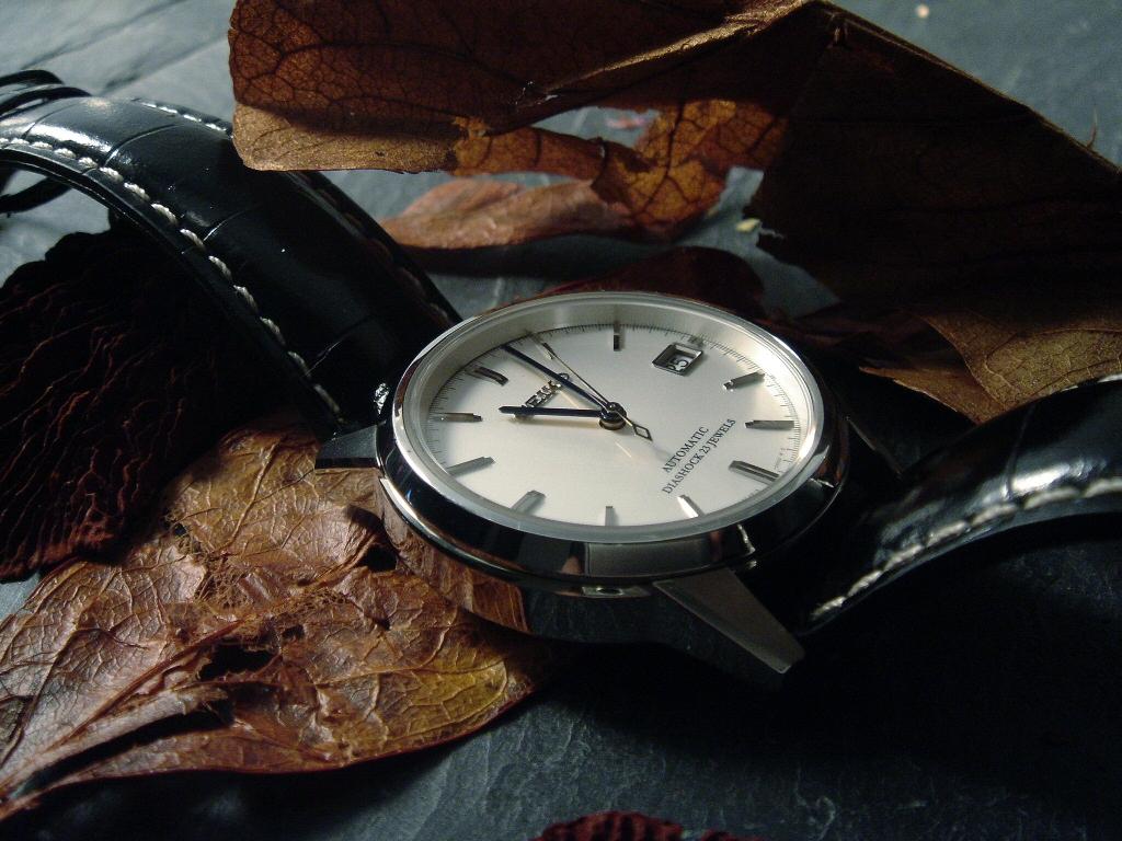 La montre du vendredi 21 Novembre 2008 Spirit43