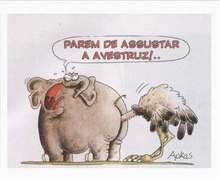 ODIO LA PUBLICIDAD Animales-graciosos-elefante-avestruz