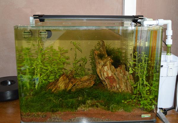 Scaper's Tank 50L de Dennerle {refonte} Rampe_LED_eteinte_PM
