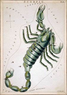 Letter from a Thuban Insider ... Scorpio-constellation